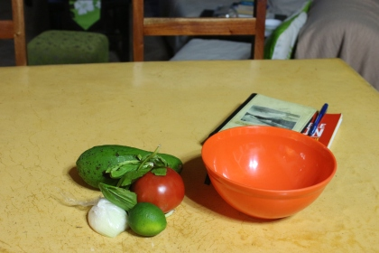 Making guacamole for lunch. My e book and journal was put aside for today.