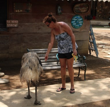 Me feeding the emus. It is somewhat frightening with their big beaks.