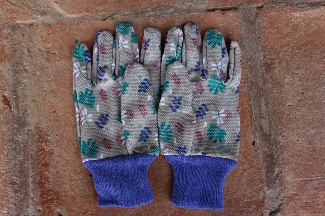 Yes, them's there fancy $3.60 gloves.