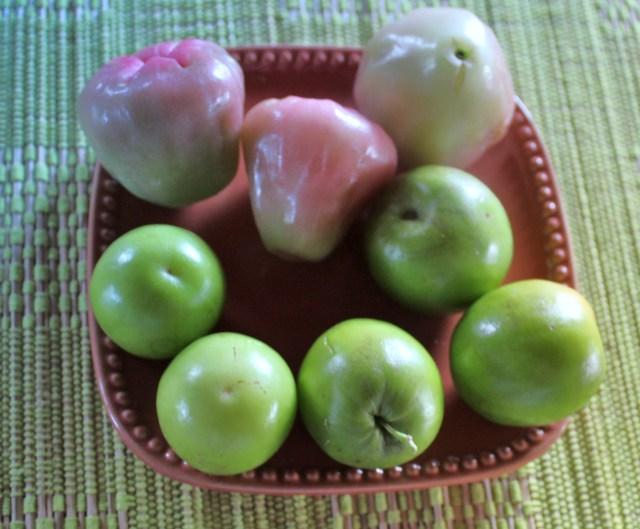 Manzana del Agua at the top and Guinda Taiwanesa at the bottom.