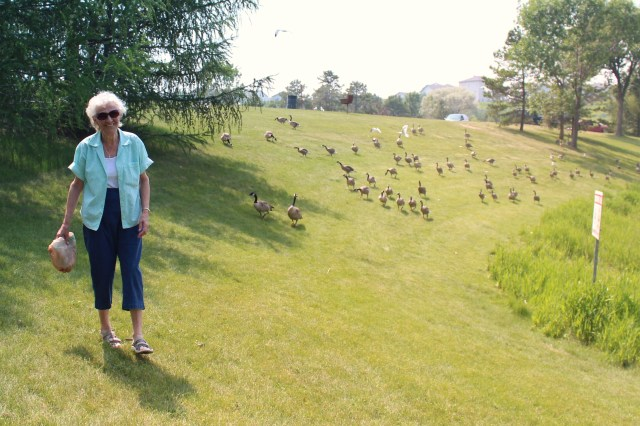 Mom and geese