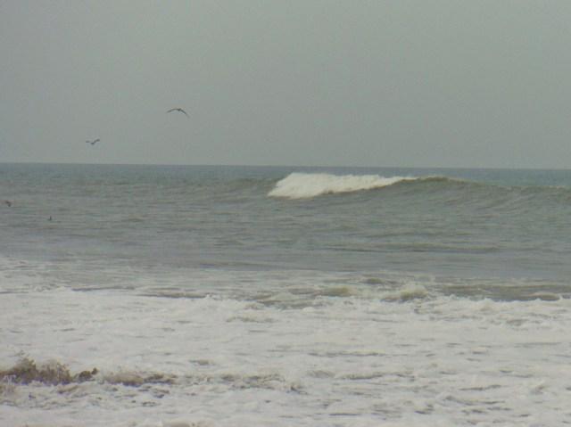Playa El Toro 2