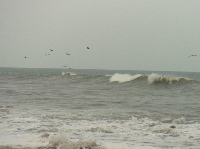Playa El Toro 3