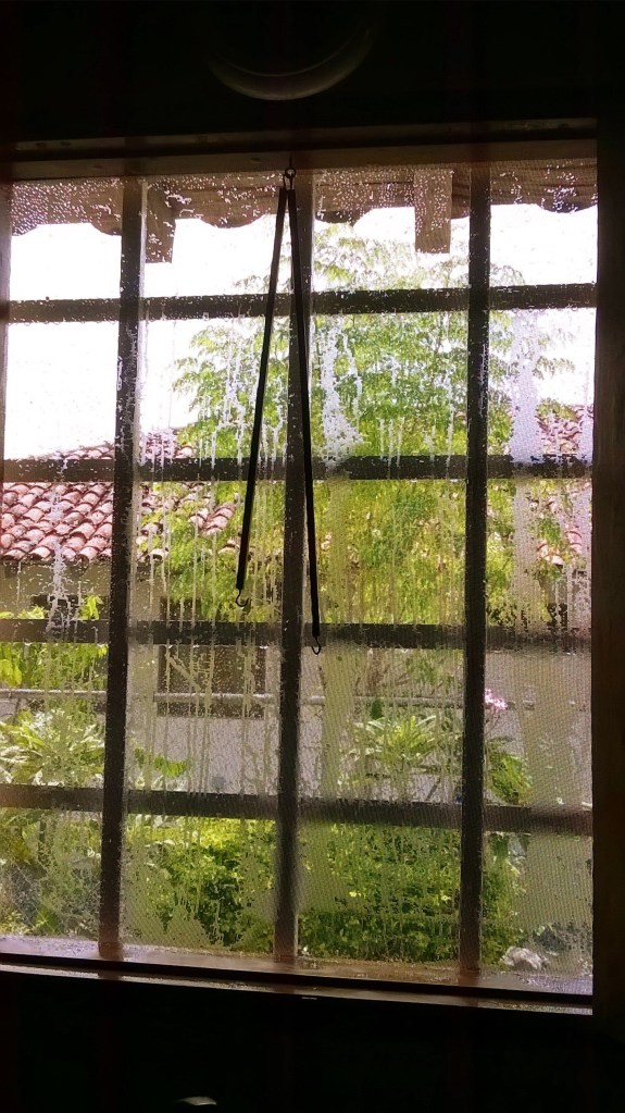 Wet Window 2