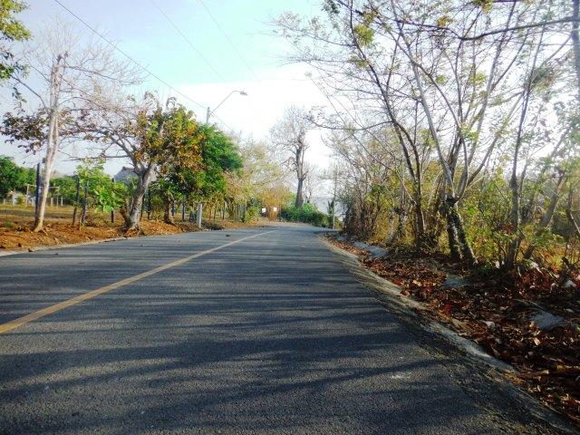 Road to Toro