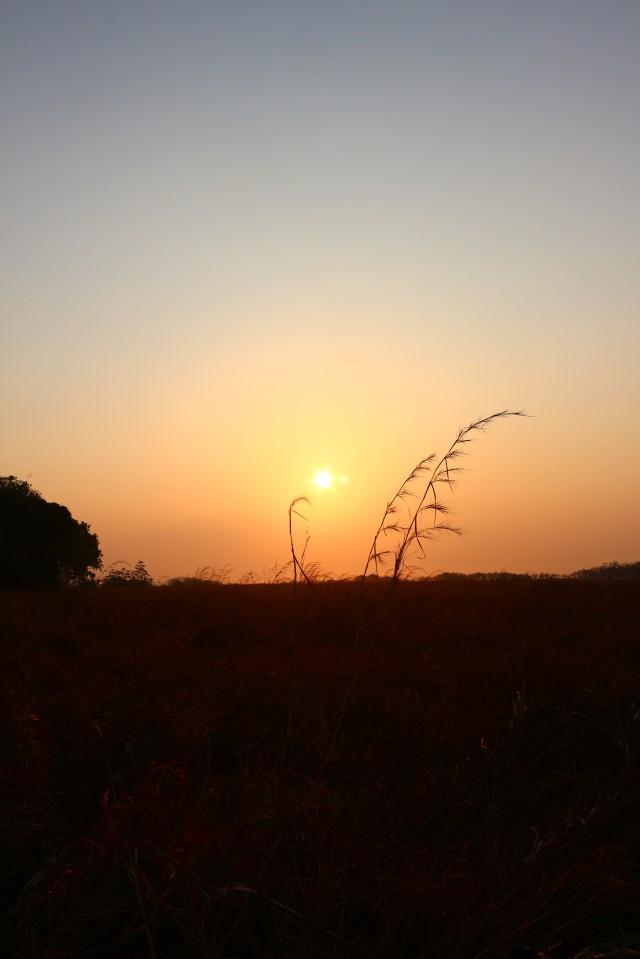 Sunrise in Panama